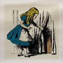Alice Wonderland Colour Door Fabric Panel