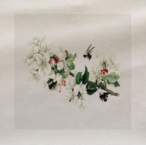 Bees Flying Insect Honey Apple Blossom Vintage Fabric Panel