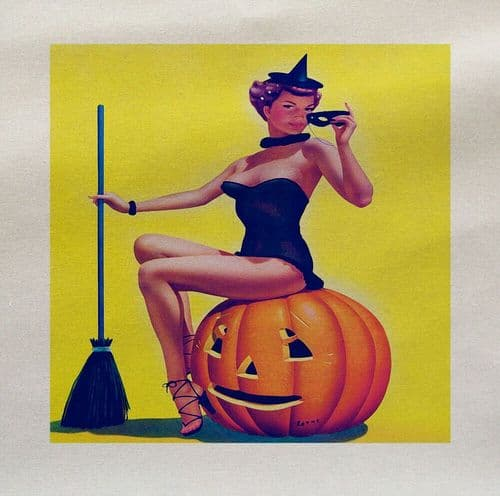 Halloween Pin Up Witch Lady Pumpkin Printed Fabric Panel