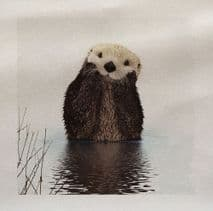Otter Cute Animal Wilflife Country side Fabric Panel