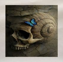 Skull Butterfly Printed Fabric Panel