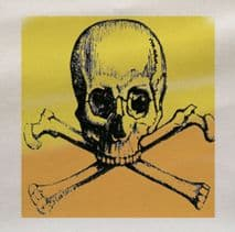 Yellow Skull and cross bones Fabric Panel