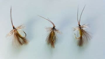 CDC OLIVE HIGH RIDER SEDGE DRY FLY