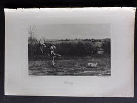 Aflalo 1898 Antique Print. Coursing. Greyhounds