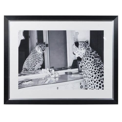 'Double Take' Cheetah Picture