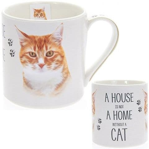 "Fine China Ginger Cat Picture ""A House is not a Home Without a Cat""  Sentiment Boxed Mug"