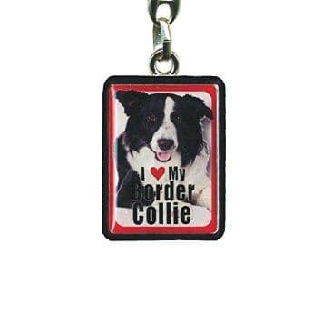 Border Collie Metal Keyring