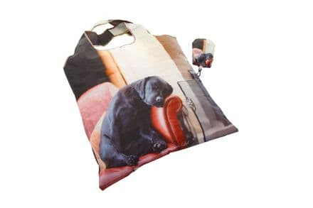 Foldaway Bag Sleeping Labrador Design