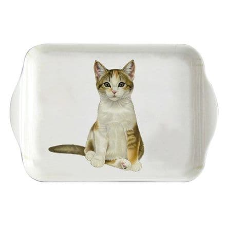 Francien's Cats, Tabby Kitten Small Tray