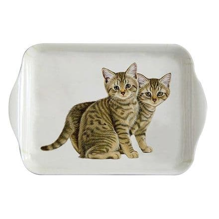 Francien's Cats, Tabby Kittens Small Tray