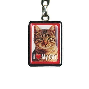 Tabby Cat Metal Keyring