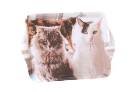 Trio of Cats Trinket Tray