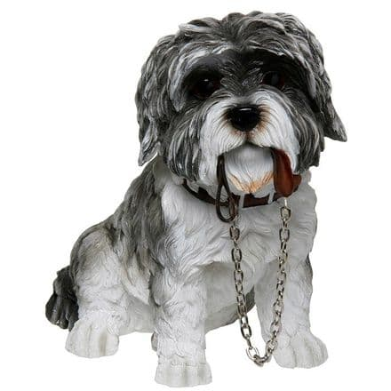 Walkies Dog Grey Shih Tzu with Lead