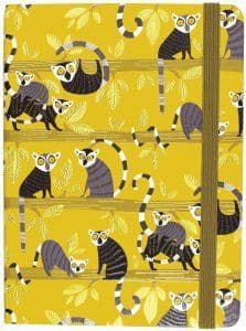 Medium Journal - Lemur Palooza
