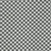 CW-A008 - Charcoal and Cream Gingham by Moda Fabrics - 55186.16 - Cotton Fabric
