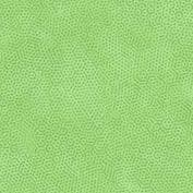 Dimples G41 - Baby Lettuce - Makower UK Dimples 1867G41 -  Cotton Fabric