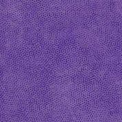 Dimples P7 - Pansy - Makower UK Dimples 1867P7 - Cotton Fabric