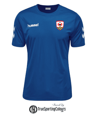HUMMEL Training Shirt - Royal - OIFC