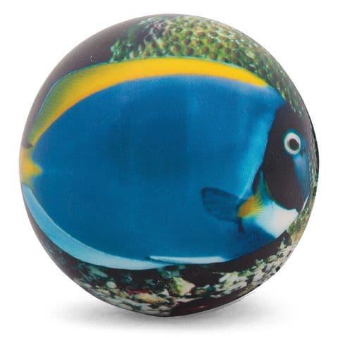 Sealife Foam Soft Stress Ball - Assorted Designs (1 Supplied)