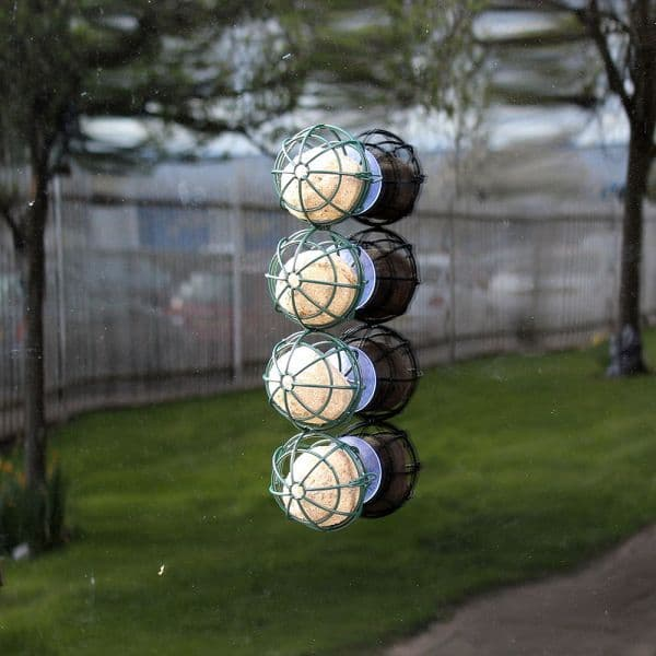Suet Balls Window Bird Feeder Fatballs Wild Birds Kingfisher